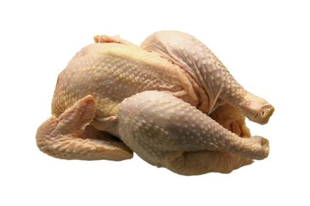 Campylobacter in chicken