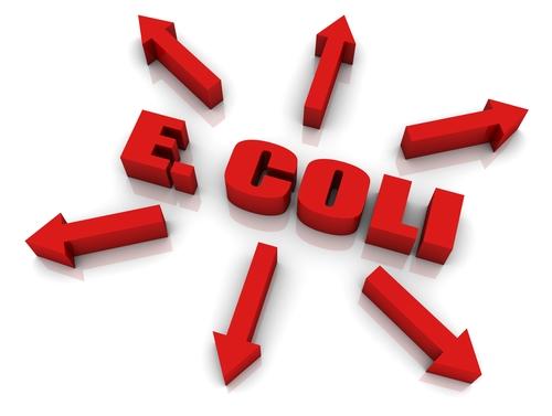 Ecoli warning